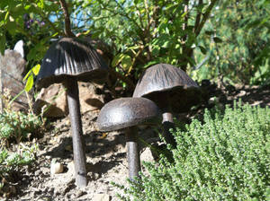 Metal Mushrooms