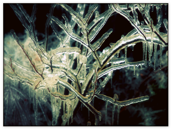 Ice Storm by ghettojack