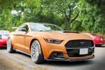 Super Mustang