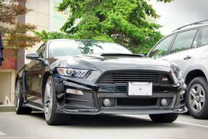 Mustang R3