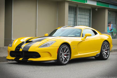 The Last Viper by SeanTheCarSpotter