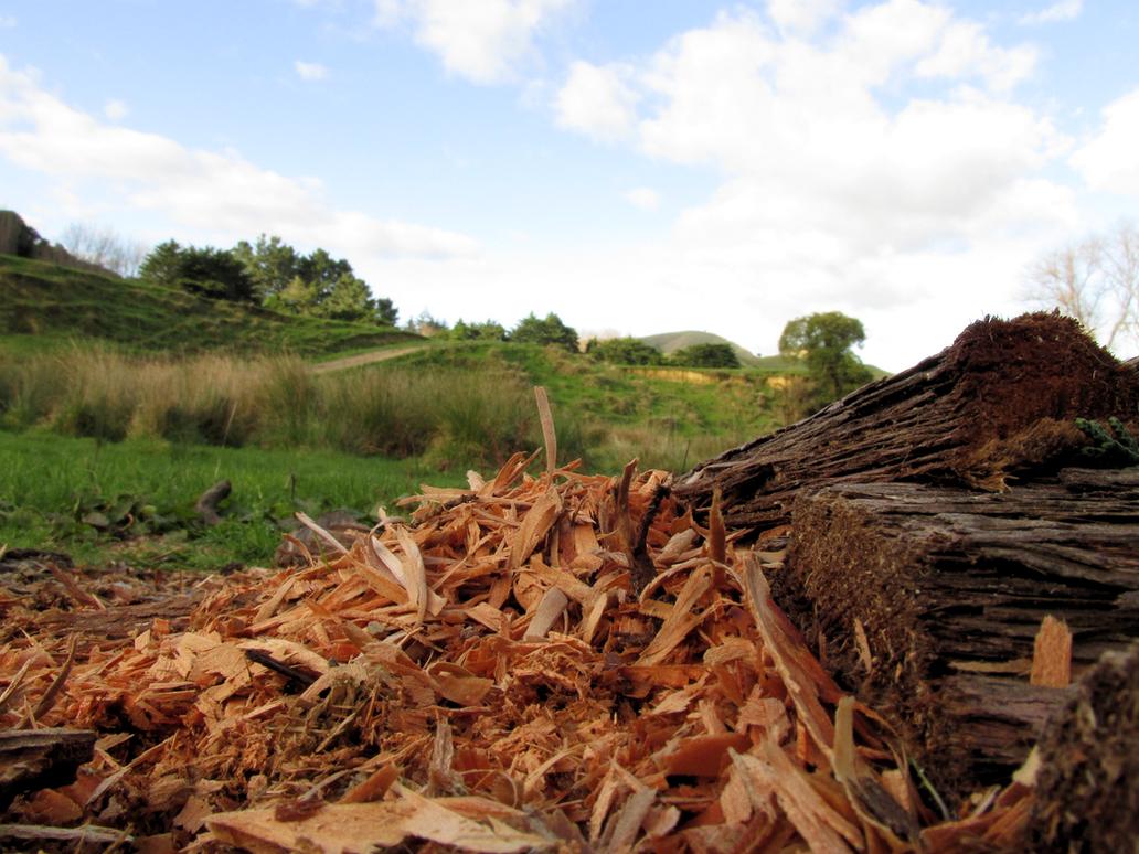 Woodchips by Recktoffin