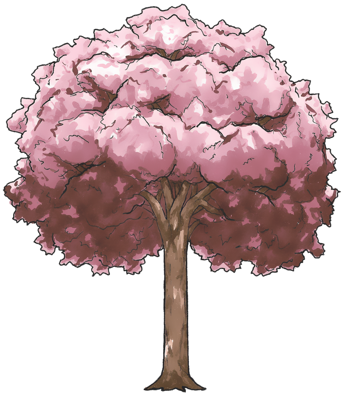 Sakura Tree Zomg by puremrz on DeviantArt