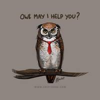 DD8 - Business Owl