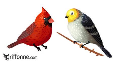 Birdies by joanniegoulet