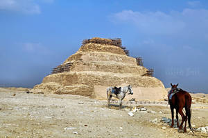 Step pyramid of Djoser in Saqqara by WhiteBook
