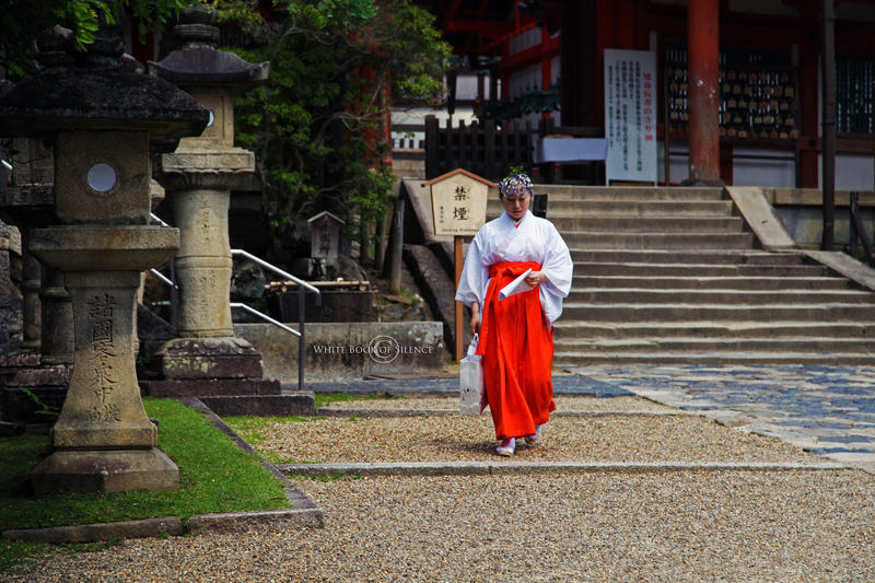 A Nun in Nara by WhiteBook