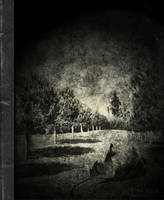 Traces of a Past by WhiteBook