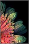 Natural hues