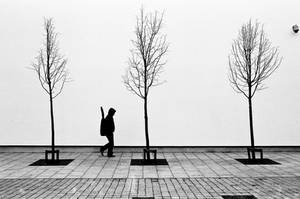 3 X Tree + 1 by Elizamac