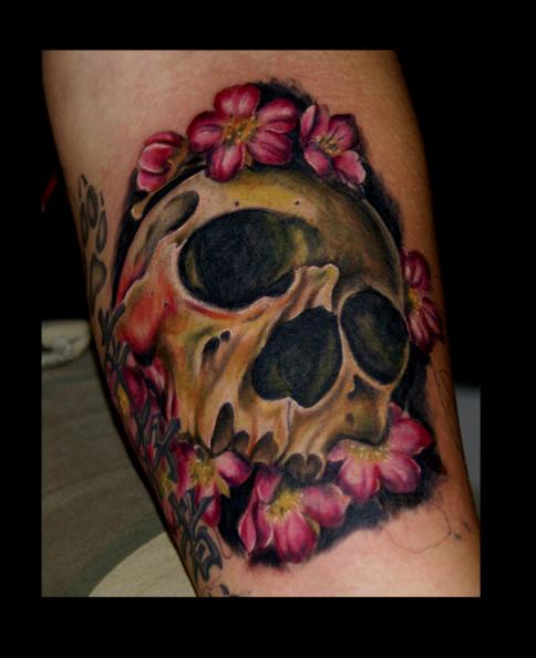 skull by eminimal