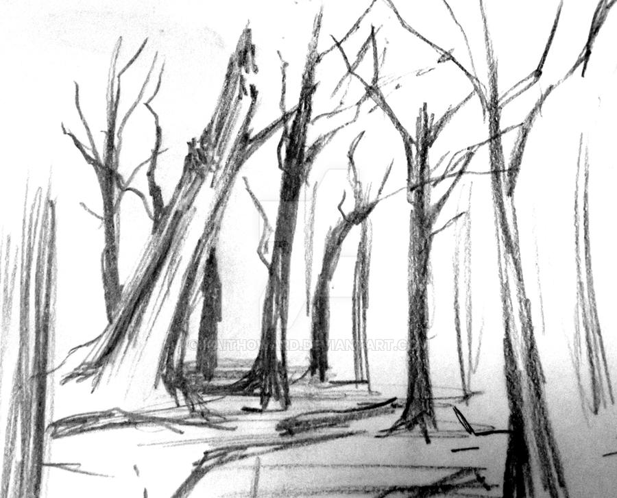 Black and white drawing of a christmas forest scene for Forest scene drawing