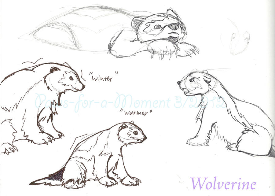 wolverine concept art 1 by paws for a moment