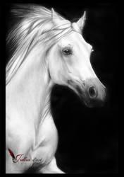Horse by jullia-jullia