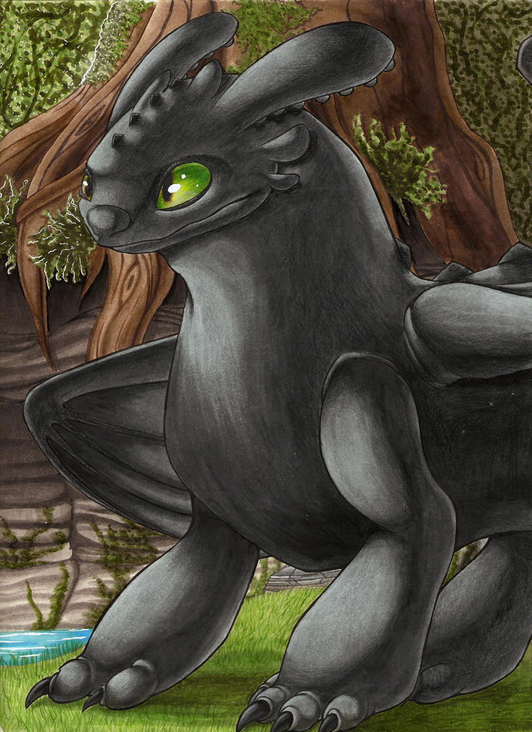Toothless by shocka123