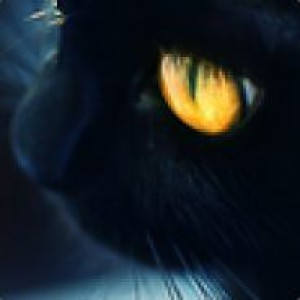 DemondGust's Profile Picture