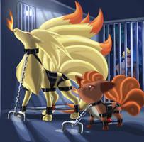 Foxy Captives