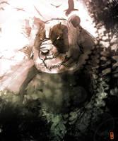 panda by Hawk4