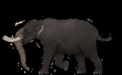 Beasts From Lagoa Santa: Stegomastodon waringi