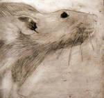 Ratty by Go-Angel