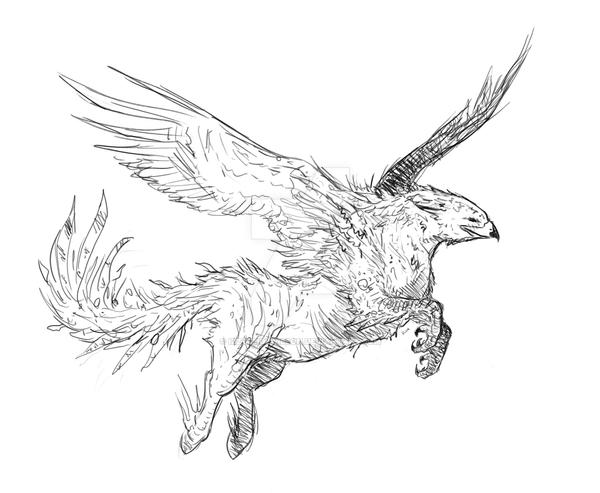 coloring pages buckbeak - photo#21