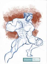 Wolverine by juarezricci