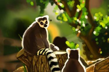 Speedpainting #5 - Ring-tailed Lemurs by nikki2290