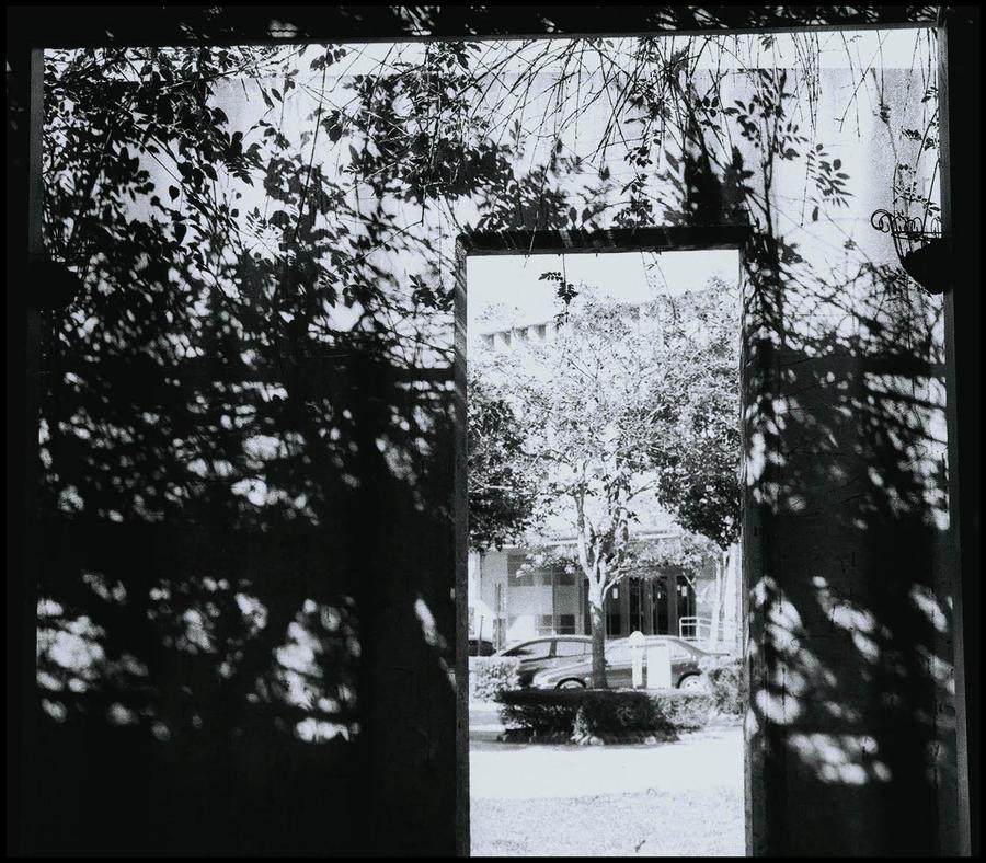 Porte by cathyss02
