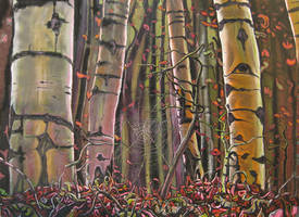 The Birches IV by montiljo