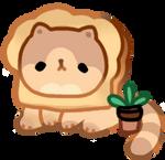 pure bread cat