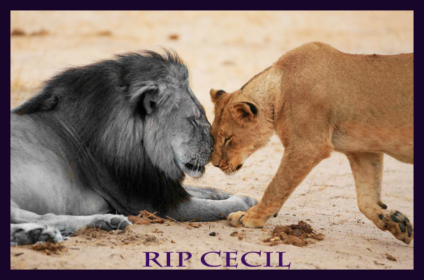 RIP Cecil by Myronavitch