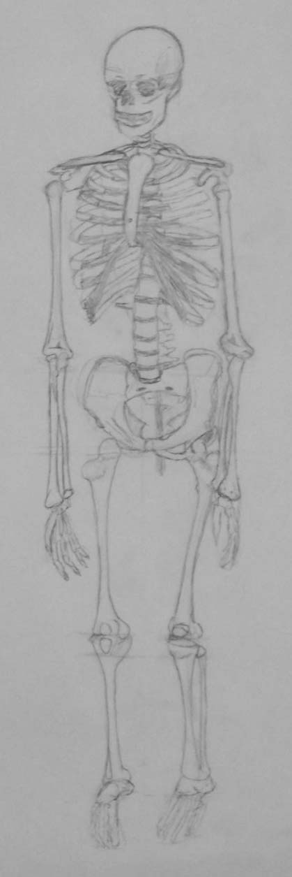Skeleton by V85