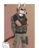 Soldier Fox by Illusir