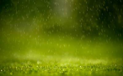 Raining by ipapun