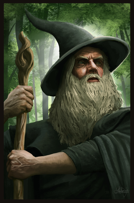Gandalf the Grey by Suzanne-Helmigh