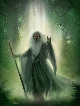 Gandalf the White.