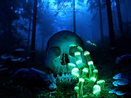 Jungle Skull by adrianoampb