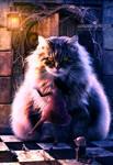 My Cute Cat by adrianoampb