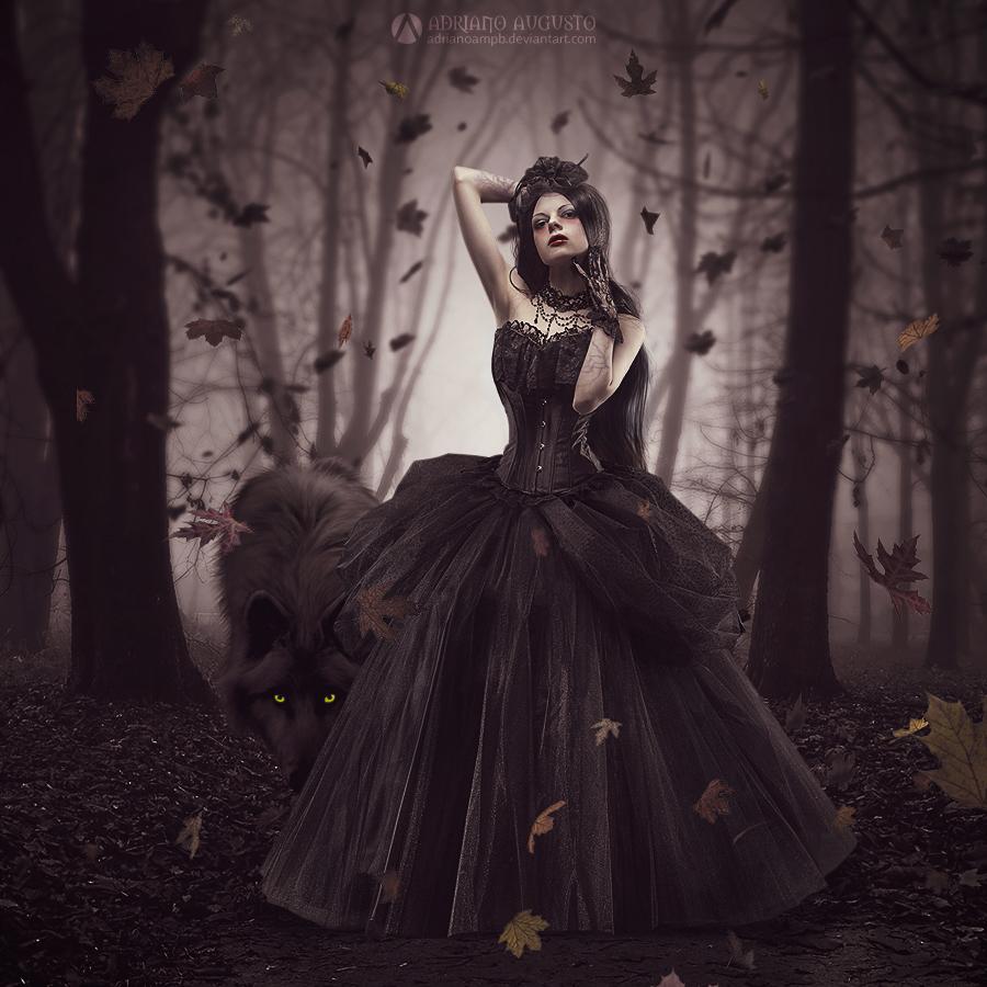 Woods by adrianoampb
