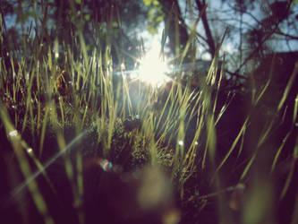 Sunsplitter