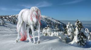blood on snow.  :: art trade by closingtimex