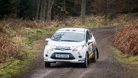 Ford Fiesta R3 - 2 by WW-Photography