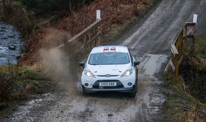 Ford Fiesta R3 - 3 by WW-Photography
