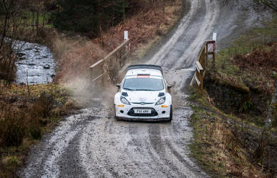 Ford Fiesta R3 by WW-Photography