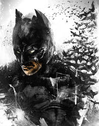 The Dark Knight Rises... So Does His Bats. by thefreshdoodle