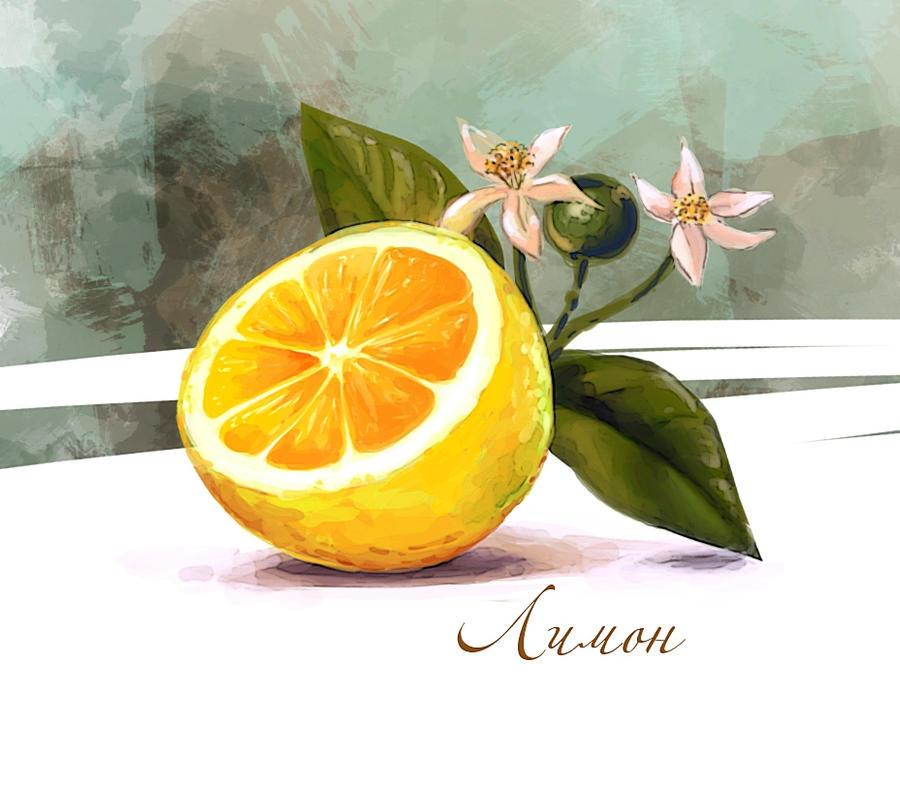 Lime by KseniaHarlequin