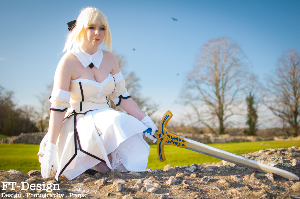 Saber Lily .:2:. by THWT
