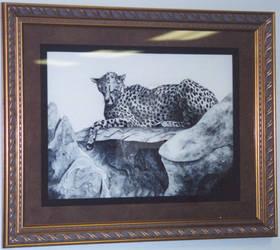 Serengeti Siesta