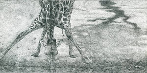TallDrink of Water-pointillism