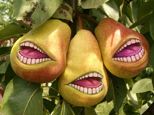 lolwut pears. by omnedai